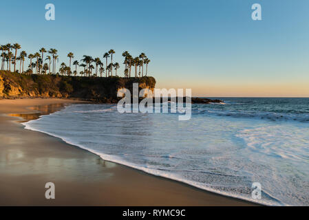 Shore with palm trees, rocks, blue sky and ocean in sunset time. Soft sunlight falling on beach. Beautiful landscape in Laguna Beach, California, USA. - Stock Photo