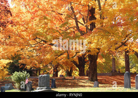 vibrant fall leaves on many trees in cemetery showing gravestones - Stock Photo