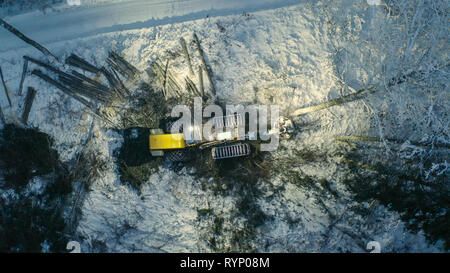 The aerial view of the log harvester on the forest with the tall trees around covered with thick snow - Stock Photo