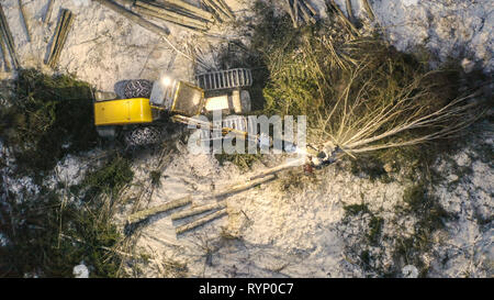 The cutting out of the logs by the log harvester on an aerial view with the snow on the ground - Stock Photo