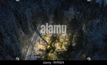 The log harvester dragging some trees on the forest as seen on the aerial view of the forest - Stock Photo