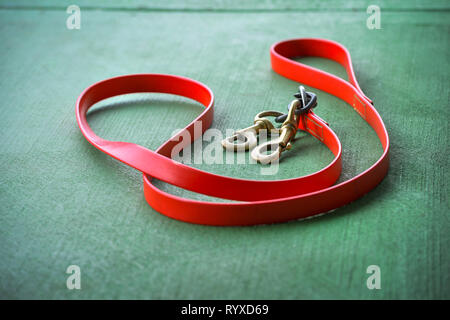 Leather horse lead laying on the green concrete surface - Stock Photo