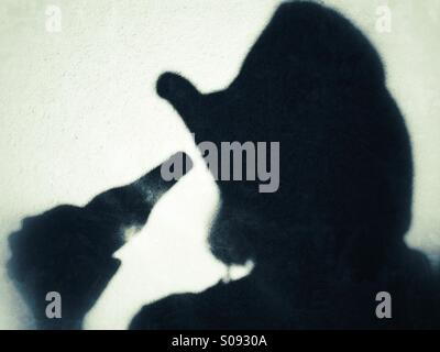 Shadow of a female wearing a cowboy hat drinking from a beer bottle - Stock Photo