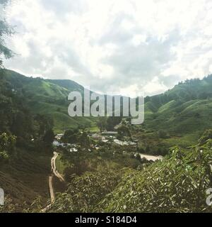Tea plantations in Cameron Highlands in Malaysia. - Stock Photo