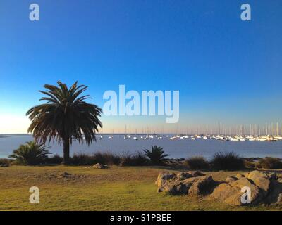 Marina, Montevideo , Uruguay - Stock Photo