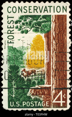 USA - CIRCA 1958: A Stamp printed in USA shows Woods and Animals, Forest Conservation Issue, circa 1958 - Stock Photo