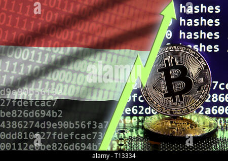 Yemen flag and rising green arrow on bitcoin mining screen and two physical golden bitcoins. Concept of high conversion in cryptocurrency mining - Stock Photo