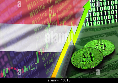 Yemen flag and cryptocurrency growing trend with two bitcoins on dollar bills and binary code display. Concept of raising Bitcoin in price and high co - Stock Photo