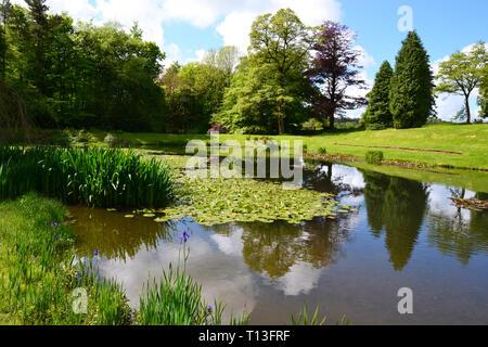 Lake in pretty gardens, Devon, UK - Stock Photo