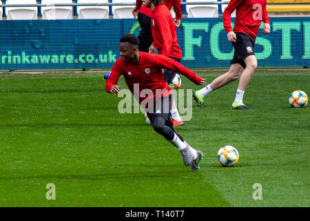 Cardiff, UK. 23rd Mar, 2019. Wales v Slovakia UEFA Euro 2020 Qualifier at the Cardiff City Stadium, Credit: Lewis Mitchell/Alamy Live News - Stock Photo