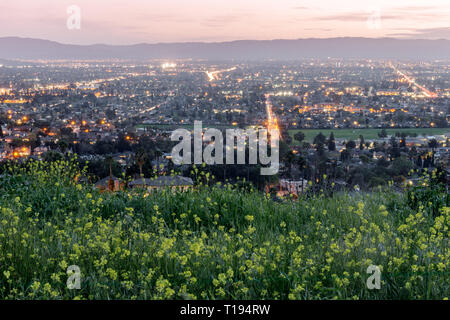 High above Silicon Valley colored with Field Mustards in Spring. - Stock Photo