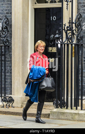 London, UK. 25th Mar, 2019. London, UK. 25th March, 2019. Andrea Leadsom MP, Leader of the House of Commons leaving Downing Street following a Cabinet meeting. Credit: claire doherty/Alamy Live News - Stock Photo