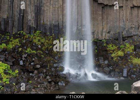 Beautiful close image of svartifoss waterfall in Iceland, summer - Stock Photo