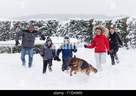 Family having fun in deep snow, running with their german shepherd dog. - Stock Photo
