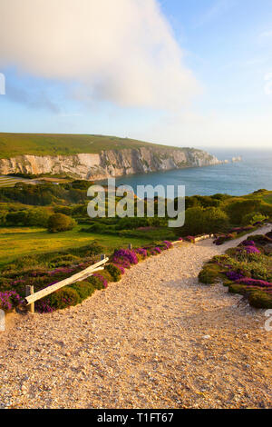 views,of,The,Needles,Alum,bay,From,Headon,Warren,Isle of Wight, England, UK, - Stock Photo