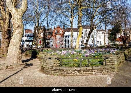 Crocuses, snowdrops, daffodils and other spring bulbs blooming in Pond Square, Highgate Village, London, UK - Stock Photo