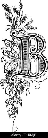 Vintage antique line drawing or engraving of decorative capital letter B with floral ornament or embellishment around. From Biblische Geschichte des alten und neuen Testaments, Germany 1859. - Stock Photo