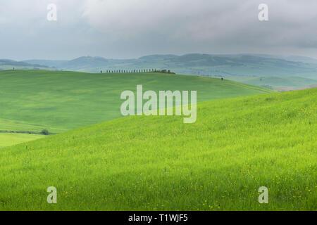 Beautiful landscape in Tuscany. Italy - Stock Photo