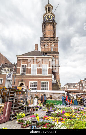 Zutphen, the Netherlands - March 28, 2019: Flower market in the medieval city center of Zutphen in the Netherlands - Stock Photo