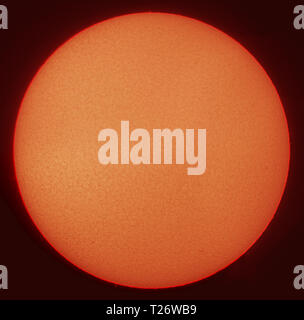 London, UK. 30 March, 2019. Solar filtered view of the sun disk clear of sunspots, solar minimum conditions with 5 consecutive days clear and a total of 58 days so far this year. Credit: Malcolm Park/Alamy Live News - Stock Photo