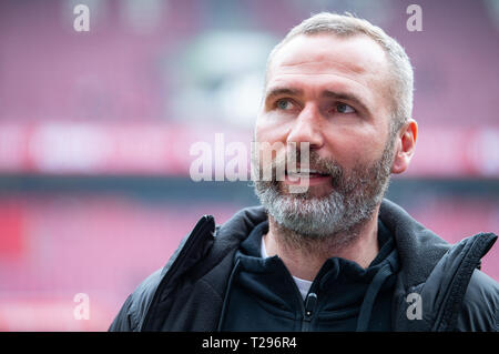 Cologne, Germany. 31st Mar, 2019.  Soccer: 2nd Bundesliga, 1st FC Cologne - Holstein Kiel, 27th matchday in the Rhein-Energie-Stadion. Kiel's coach Tim Walter is about to play on the sidelines. Photo: Guido Kirchner/dpa - IMPORTANT NOTE: In accordance with the requirements of the DFL Deutsche Fußball Liga or the DFB Deutscher Fußball-Bund, it is prohibited to use or have used photographs taken in the stadium and/or the match in the form of sequence images and/or video-like photo sequences. Credit: dpa picture alliance/Alamy Live News - Stock Photo