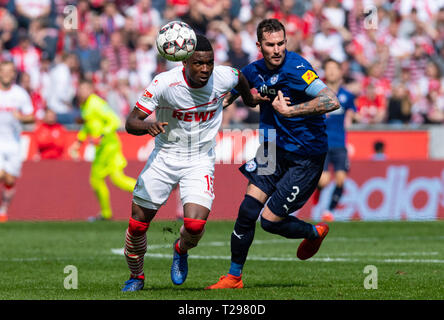 Cologne, Germany. 31st Mar, 2019.  Soccer: 2nd Bundesliga, 1st FC Cologne - Holstein Kiel, 27th matchday in the Rhein-Energie-Stadion. Cologne's Jhon Cordoba (l) and Kiel's Dominik Schmidt fight for the ball. Photo: Guido Kirchner/dpa - IMPORTANT NOTE: In accordance with the requirements of the DFL Deutsche Fußball Liga or the DFB Deutscher Fußball-Bund, it is prohibited to use or have used photographs taken in the stadium and/or the match in the form of sequence images and/or video-like photo sequences. Credit: dpa picture alliance/Alamy Live News - Stock Photo