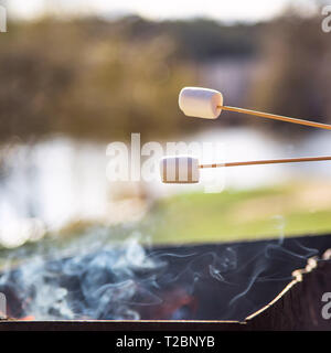 Marshmallow on wooden sticks over a smoking bonfire in the grill. Picnic dessert - Stock Photo