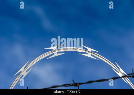 LAS VEGAS, NEVADA, USA - FEBRUARY 2019: Close up of coils of razor wire on a security fence around McCarran International Airport in Las Vegas. - Stock Photo
