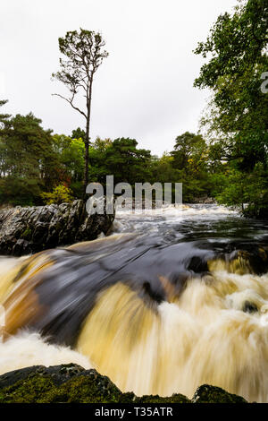 Shown under full flow conditions, Cassley Falls on River Cassley near Achness, Sutherland, Scotland. - Stock Photo