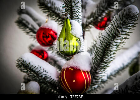 Decoration balls on snowy fir tree, detail - Stock Photo
