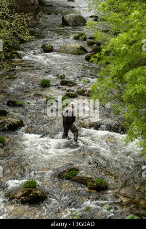 Overhead view of a fisherman wearing waders while fishing inside a river - Stock Photo