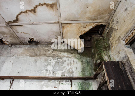 Damaged ceiling from water leak in old abandoned house - Stock Photo