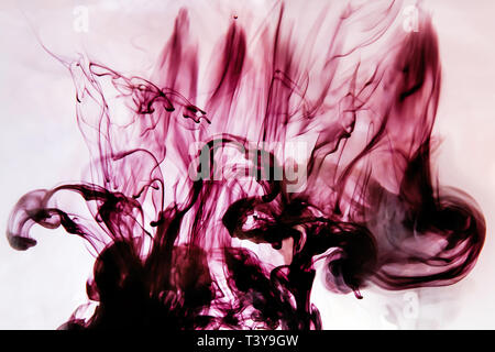 Bright maroon dark drops in water on a white background. Colored abstract drop in water in motion. Cloud of acrylic ink under water paint background. - Stock Photo