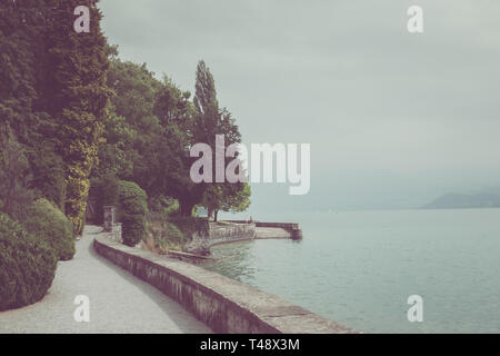A walk in the national park, around flowers, green trees and lake Thun. Summer landscape background - Stock Photo