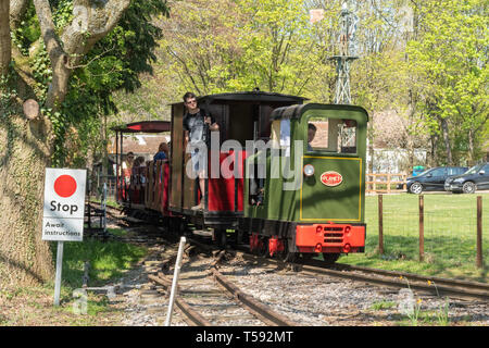 Train ride on the Old Kiln Light Railway, a narrow gauge railway at the Rural Life Centre, Tilford, Surrey, UK - Stock Photo