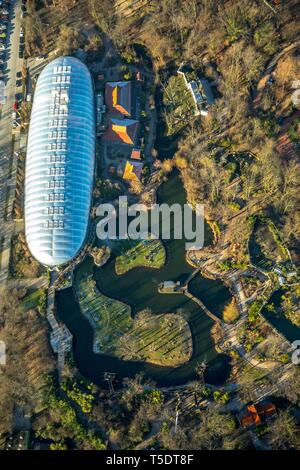 Aerial view, glass dome with water landscape, Zoo, ZOOM Erlebniswelt, Gelsenkirchen, Ruhr area, North Rhine-Westphalia, Germany - Stock Photo