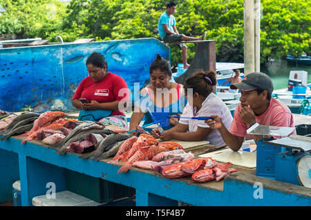 Fish sellers presenting the catch of the day, fish market, Puerto Ayuro, Santa Cruz Island, Galapagos Islands, Ecuador - Stock Photo