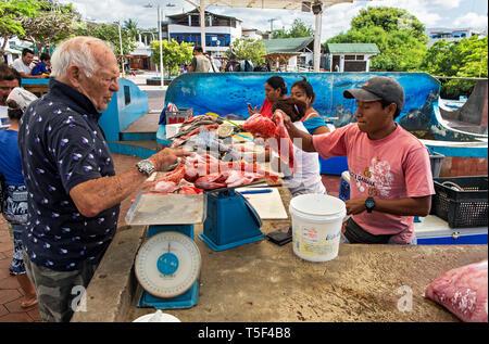 Selling fish at the fish market of Puerto Ayuro, Santa Cruz Island, Galapagos Islands, Ecuador - Stock Photo