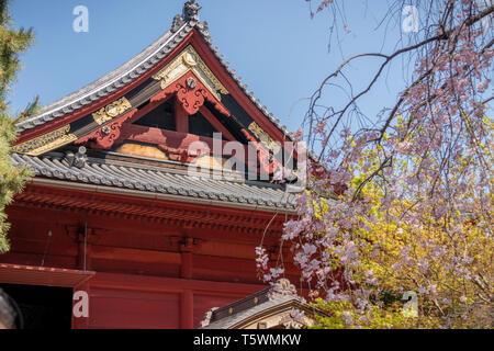 Shinobazunoike Bentendo Temple, Ueno Park, Tokyo, Japan - Stock Photo