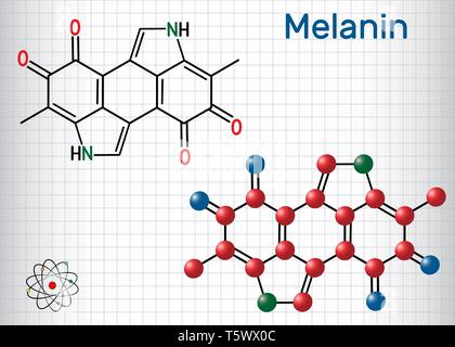 Melanin  molecule. Structural chemical formula and molecule model. Sheet of paper in a cage. Vector illustration - Stock Photo