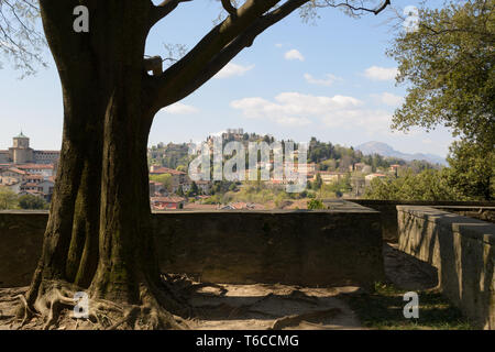 Landscape view of Bergamo Alta seen from under a beautiful tree in the park of the Bergamo's fortress - Stock Photo