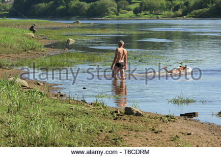 a man and a dog in the water, not far from the shore, on a hot, sunny summer day - Stock Photo