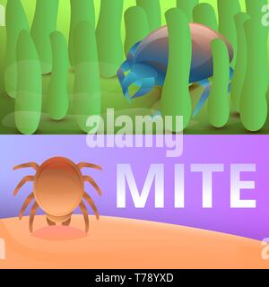 Insect mite banner set. Cartoon illustration of insect mite vector banner set for web design - Stock Photo