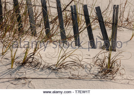 Snow fencing buried in the sand dunes, helping to stabilze the sand from being blown away within Gulf State Park, Gulf Shores, Alabama - Stock Photo