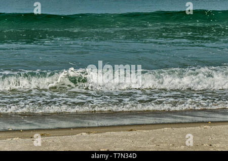 Waves rolling onto a beach in Florida - Stock Photo