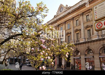 Palace of the Venerable Factory of the Duomo of Milan with the ancient clock on its roof and blossoming magnolia tree flowers in front of it. - Stock Photo
