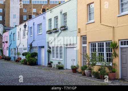 Colourful painted houses and small trees and shrubs in containers in Conduit mews, Bayswater, London, England - Stock Photo