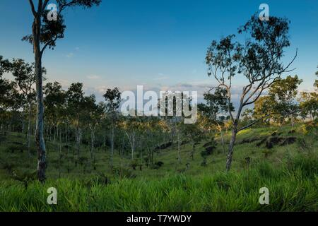 Papua-New-Guinea, Papua bay, National Capital District, Port Moresby town, Varirata National Park - Stock Photo
