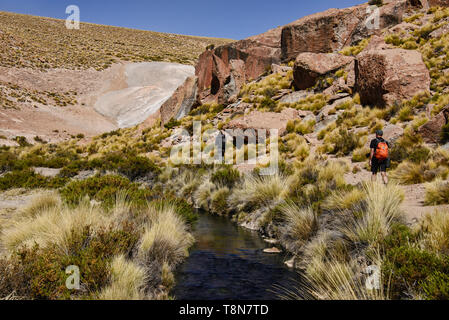 Hiking along the Rio Blanco thermal river near El Tatio Geyser, San Pedro de Atacama, Chile - Stock Photo