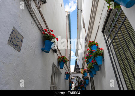Calleja de las Flores,  is one of the most popular tourist streets of ,Cordoba, Andalusia, Spain - Stock Photo
